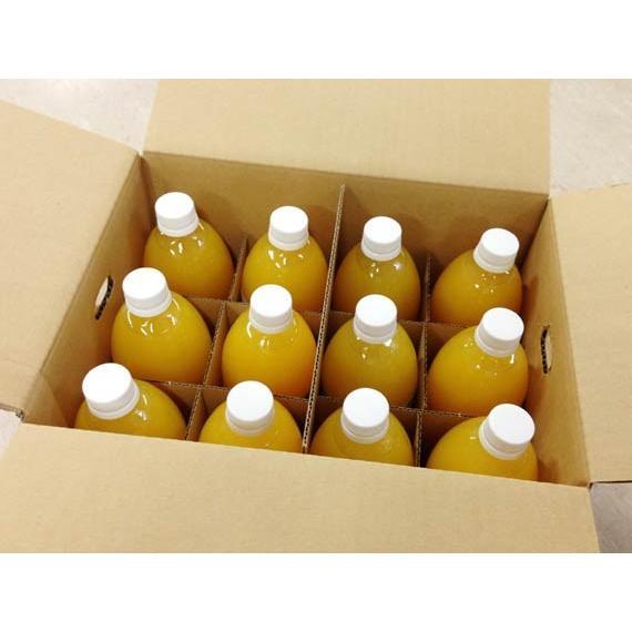 えひめの柑橘ストレートジュース詰め合わせ3種 500ml【12本入】 shimanami 03