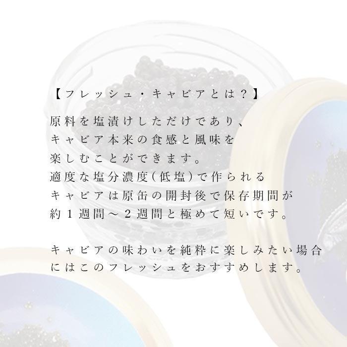 キャビア ベルーガ(アゼルバイジャン産) フレッシュ 40g 高級 ギフト 贈答品 内祝 バレンタイン 父の日 花以外 入学祝い おめでとう  食品【送料無料】|shimanoya|03