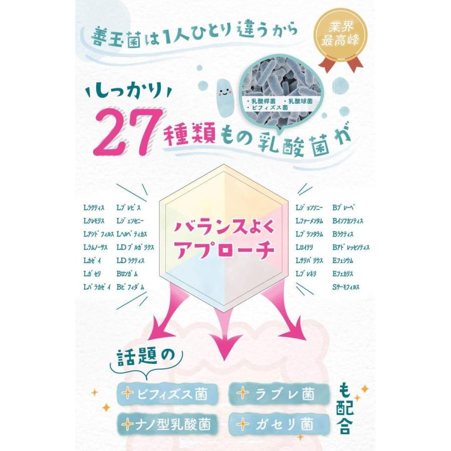 めぐみの乳酸菌 ビフィズス菌 乳酸菌 オリゴ糖 食物繊維 1袋で27種、6兆個の乳酸菌 サプリメント shimizunet004 03