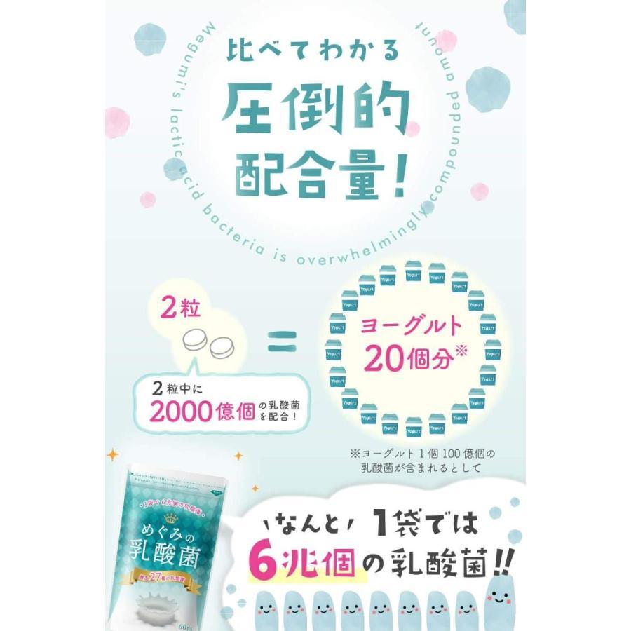 めぐみの乳酸菌 ビフィズス菌 乳酸菌 オリゴ糖 食物繊維 1袋で27種、6兆個の乳酸菌 サプリメント shimizunet004 05