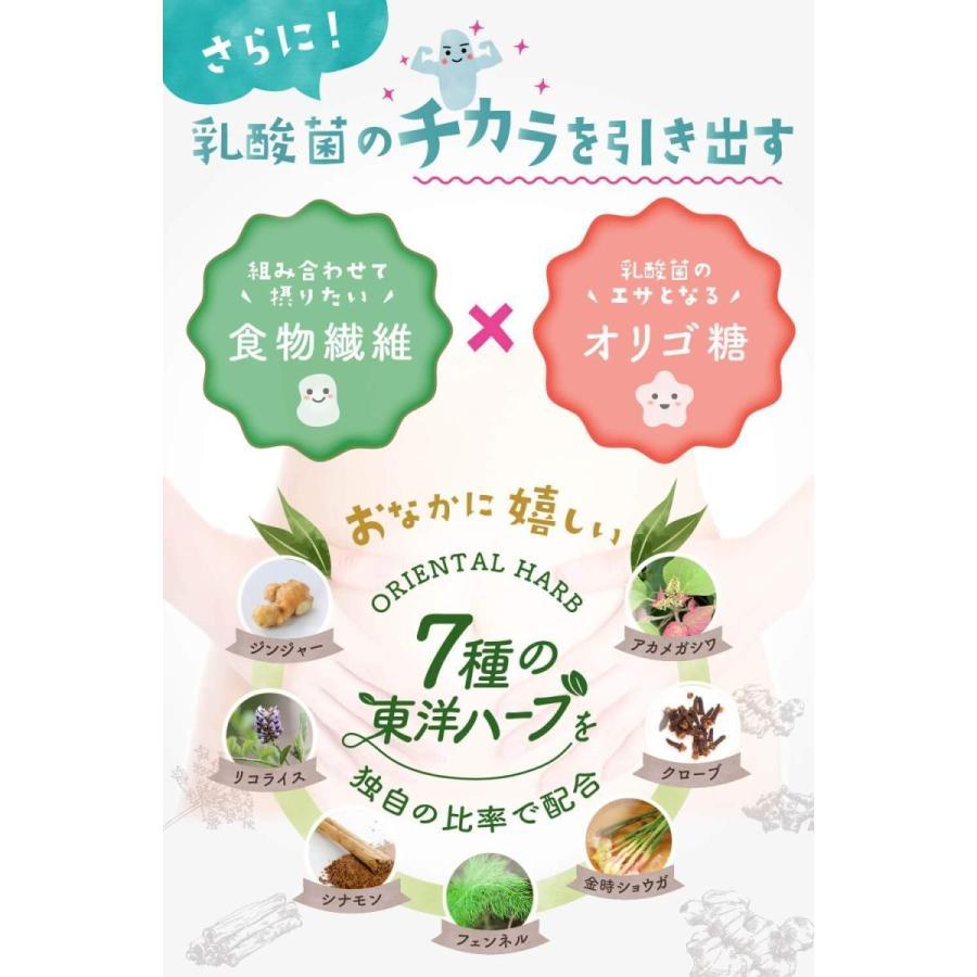 めぐみの乳酸菌 ビフィズス菌 乳酸菌 オリゴ糖 食物繊維 1袋で27種、6兆個の乳酸菌 サプリメント shimizunet004 06
