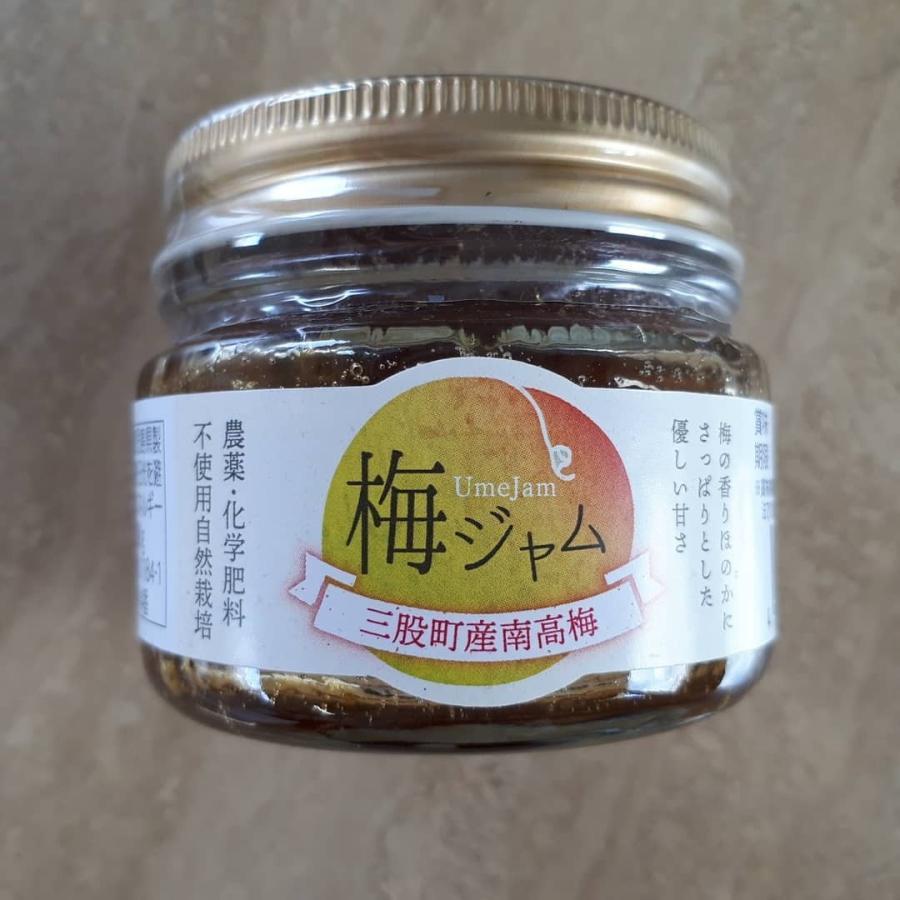 梅ジャム 120g 宮崎県三股町産梅使用 農薬・化学肥料不使用 自然栽培 shimonouen