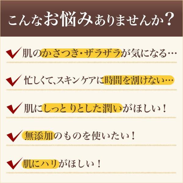 パーフェクトワン モイスチャージェル 75g / 新日本製薬 / オールインワンジェル オールインワンゲル 化粧水 乳液 クリーム 美容液 パック 化粧下地|shinnihonseiyakuec|04