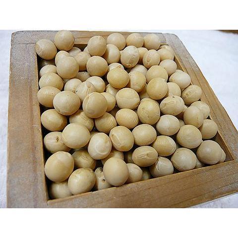 令和1年産 北海道産 無農薬 無化学肥料 JAS有機栽培大豆とよまさり 1kg shinozaki-kome
