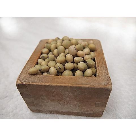 平成29年産 手作り味噌材料 北海道産普通栽培青大豆音更大袖振 1kg|shinozaki-kome
