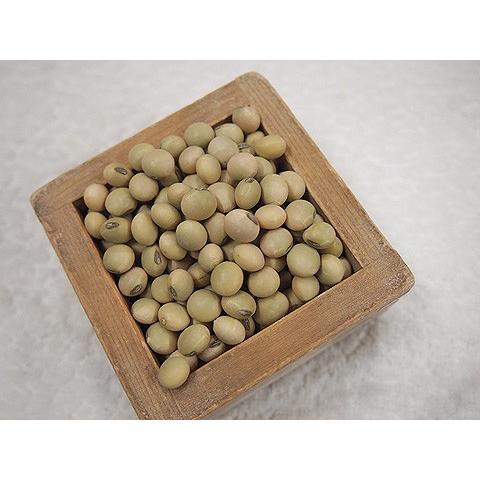 平成29年産 手作り味噌材料 北海道産普通栽培青大豆音更大袖振 1kg|shinozaki-kome|02