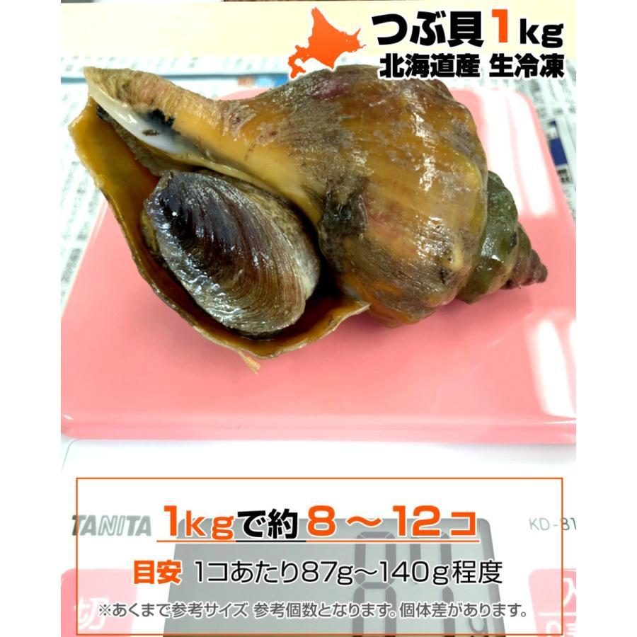 青 つぶ 貝
