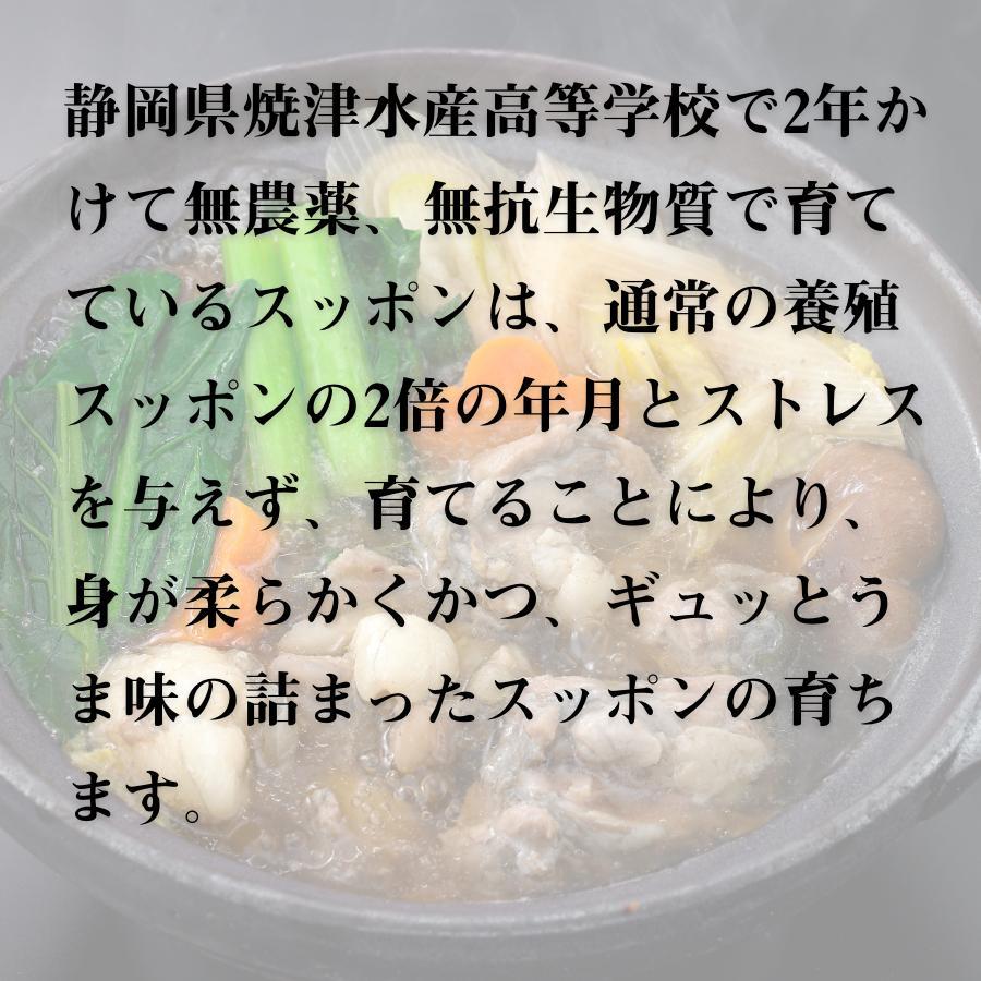 すっぽん スッポン すっぽん鍋セット 二年養殖 抗生物質不使用 焼津水産高校 黒門市場 鼈 コラーゲンたっぷり 薬膳 shinuoei-store 04