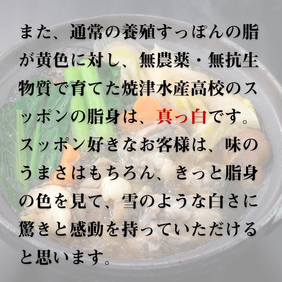 すっぽん スッポン すっぽん鍋セット 二年養殖 抗生物質不使用 焼津水産高校 黒門市場 鼈 コラーゲンたっぷり 薬膳 shinuoei-store 05