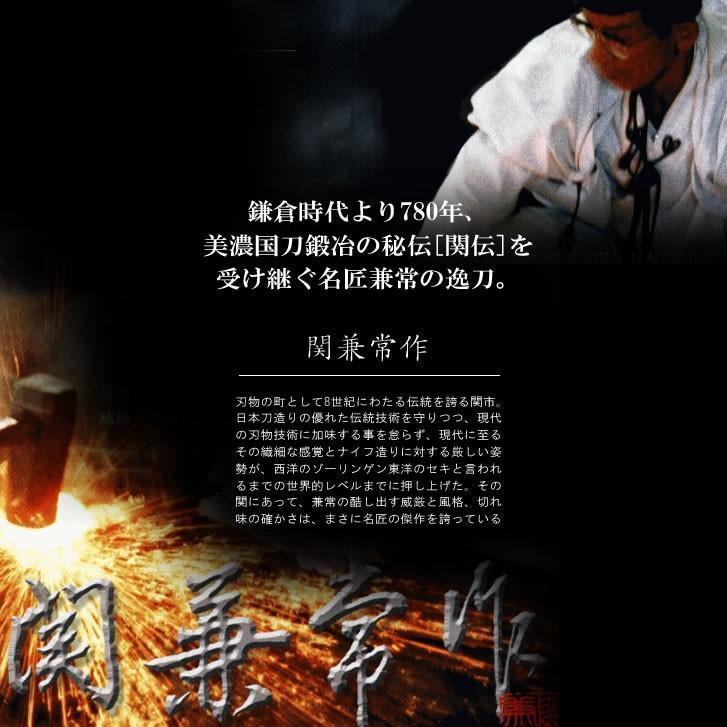 爪切り 鋼鍛造 手足用 関兼常 飛散防止カバー 爪ヤスリ付 高級 ツメキリ はがね 厚い爪もラクラク 高耐久性 日本製 匠の技 shinwa-corp 02