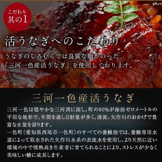 蒲焼き 2尾  (一尾 120g) K-2 鰻    ウナギ うなぎ 国産 三河一色産 炭火焼きギフト|shiromura|05