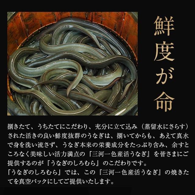 蒲焼き 2尾  (一尾 120g) K-2 鰻    ウナギ うなぎ 国産 三河一色産 炭火焼きギフト|shiromura|06
