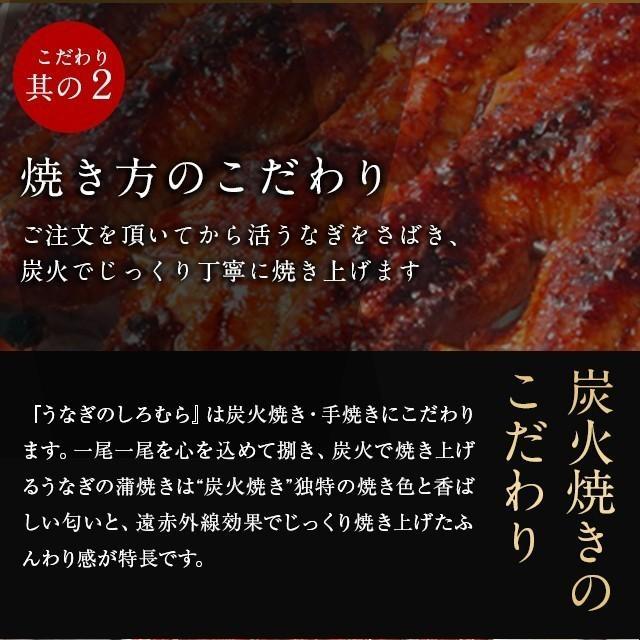 うなぎ CM-500 カット 500g (6~11パック)  1食約50g 蒲焼き   鰻 ウナギ 訳あり 国産|shiromura|07