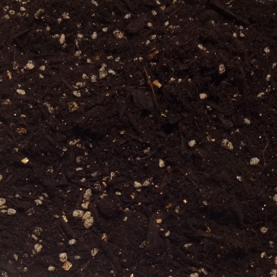自然応用科学 果樹・庭木がまくだけで甦る 14L×4袋セット|shizen-club|02