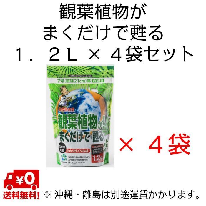 自然応用科学 観葉植物がまくだけで甦る 1.2L×4袋セット|shizen-club