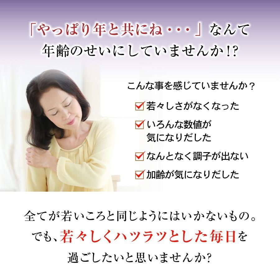 胡麻板 セサミン約7倍!リグナンリッチ黒ごま使用 自然共生 バランス栄養 栄養調整食品 ポイント消化|shizen-kyosei|02
