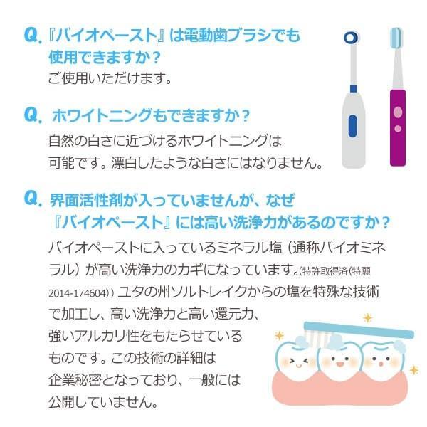 バイオペースト(60g) 3本セット アルラ shizenkan 11