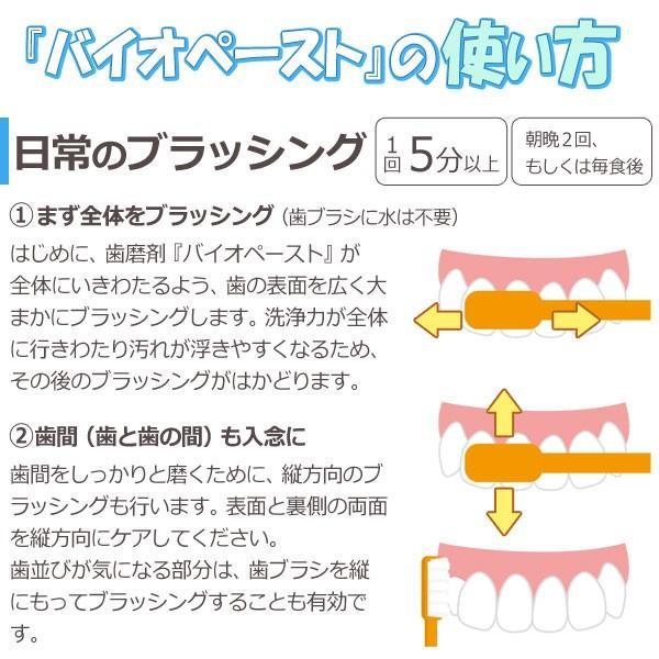 バイオペースト(60g) 3本セット アルラ shizenkan 07