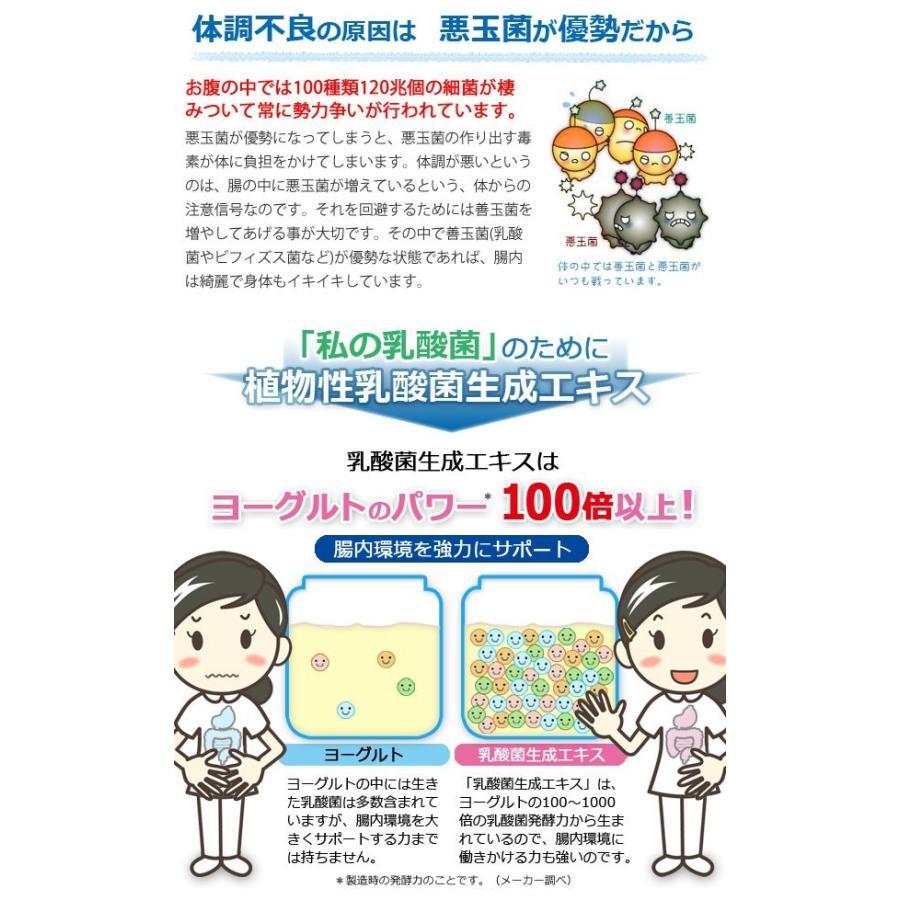 植物性乳酸菌生成エキス(5ml×30包) オーサワジャパン|shizenkan|04