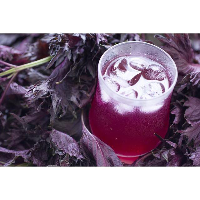 蘇ジュース無糖希釈用300ml【料理にも使えます】北海道知床の豊かな自然に育てられた最高のピュアな紫蘇だけを使いました。|shizenkizuna-store|02