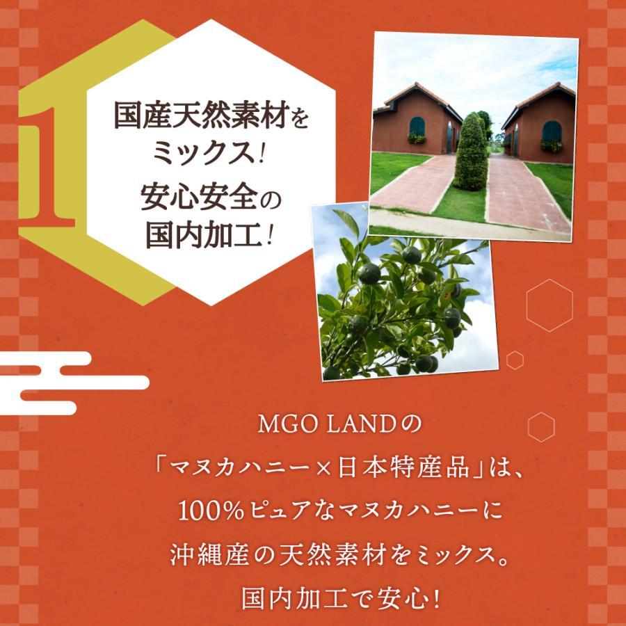 マヌカハニー お試し MGO 220 国産 天然素材 マヌカ の花の はちみつ  マヌカ蜂蜜 100g|shizenshop|11