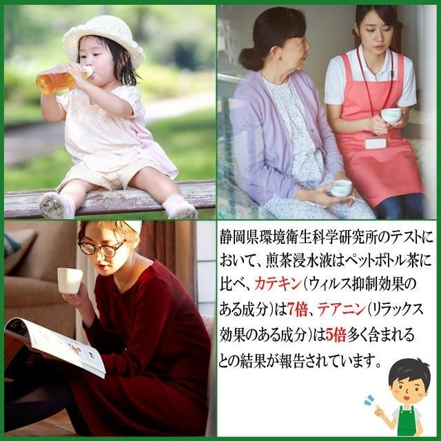 深むし茶 牧之原産 200g×3袋 送料無料|shizuokaochaya|09