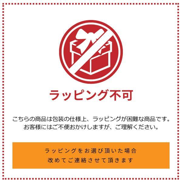 ポケモン ポケットモンスター レッスンバッグ QPK2-2100 バッグ・鞄|shoesbase2nd|05