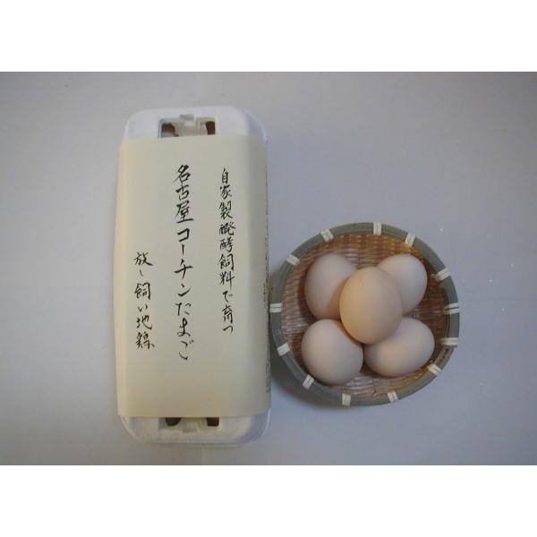 安心安全な自家製発酵飼料を与えた地鶏のこだわりたまご(名古屋コーチン有精卵10個入)|shoku-anzen