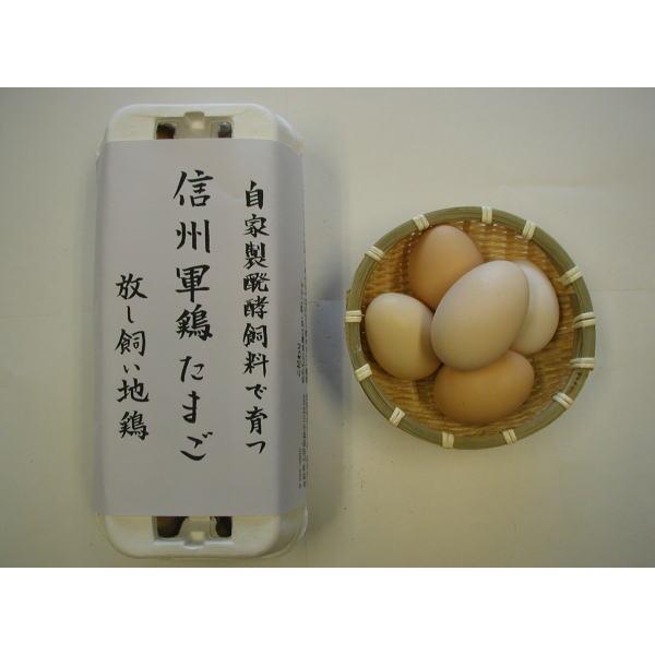 こだわりたまご信州軍鶏(1パック10個入 有精卵) shoku-anzen