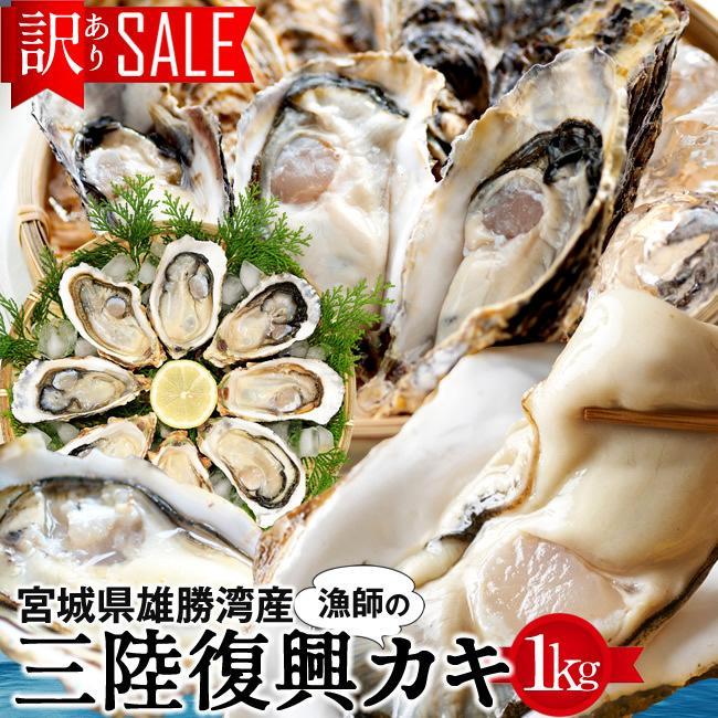 牡蠣 訳あり [規格外] 1kg 加熱用 殻付き牡蛎 漁師直送 カキ 生かき 三陸 宮城県産 ギフト[御歳暮 ギフト] shokukikou