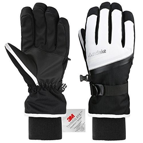 並行輸入品Andake Ski Gloves, Touchscreen 3M Thinsulate Waterproof TPU Membrane Women's WinterS-M