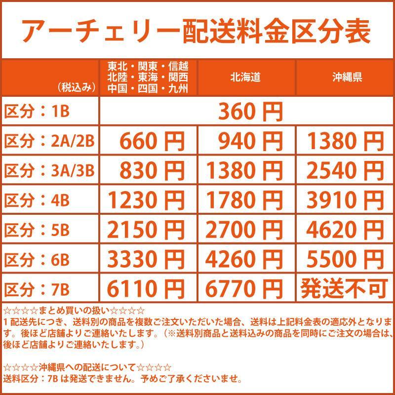 スポーツ 沖縄 ムラサキ