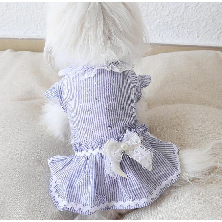 犬 服 ワンピース 春夏新作 超可愛いペット服 犬服 ワンピース ワンちゃん服 ドッグウェア 犬用のスカート 涼しい|shop-bluemoon|02