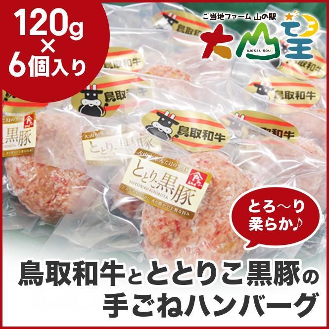 鳥取和牛 と ととりこ豚 のとろ〜り柔らか 手ごね ハンバーグ 豚肉 牛肉  レトルト 冷凍    ギフト 贈答  バーベキュー  キャンプ ととりこ黒豚|shop-daisenbou