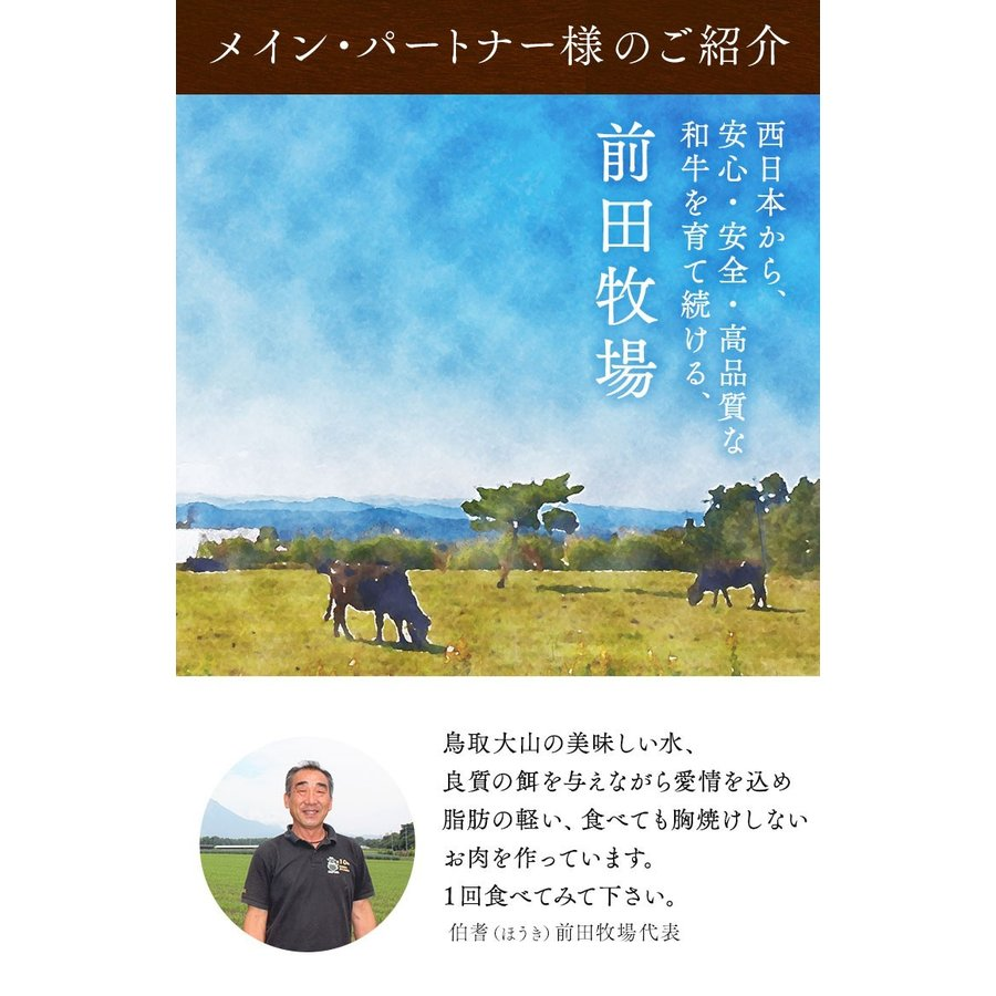 鳥取和牛 フィレ ステーキ ヒレ 500g 和牛 黒毛和牛 牛肉 A5 ヒレ肉 A5ランク牛  ヒレステーキ 和牛ステーキギフト 内祝い  牛     バーベキュー  キャンプ|shop-daisenbou|17