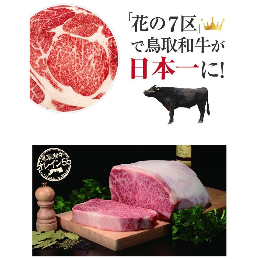 鳥取和牛オレイン55 サーロインステーキ 220g×2枚 和牛 オレイン55 オレイン牛 和牛サーロインステーキ お肉 ギフト 内祝     バーベキュー  キャンプ shop-daisenbou 11
