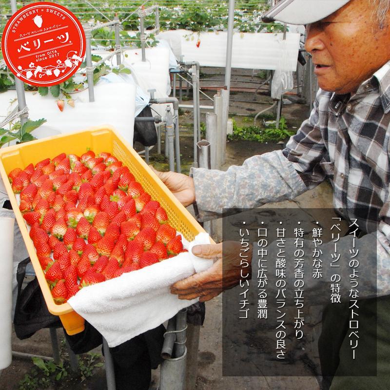 冷凍いちご ベリーツ 1kg 大分県産ブランド苺 イチゴ shop-furusato 09