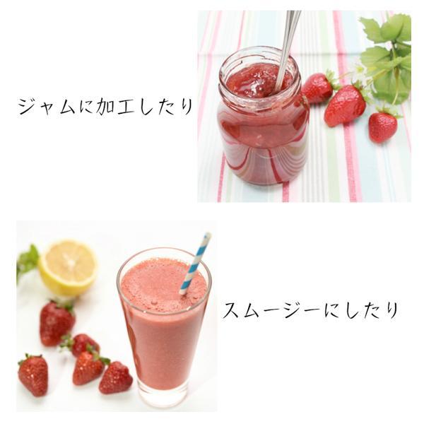 冷凍いちご ベリーツ 1kg 大分県産ブランド苺 イチゴ shop-furusato 03