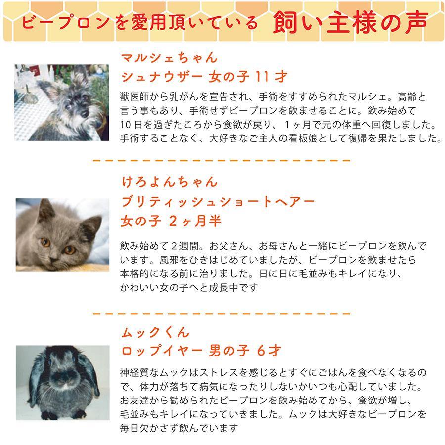 【国際品質基準認定】ビープロン beePRON プロポリス 30cc スポイトタイプ ペット用 犬用 猫用 免疫力 サプリメント 高濃度 無添加 天然 抗生物質 shop-kg2 07