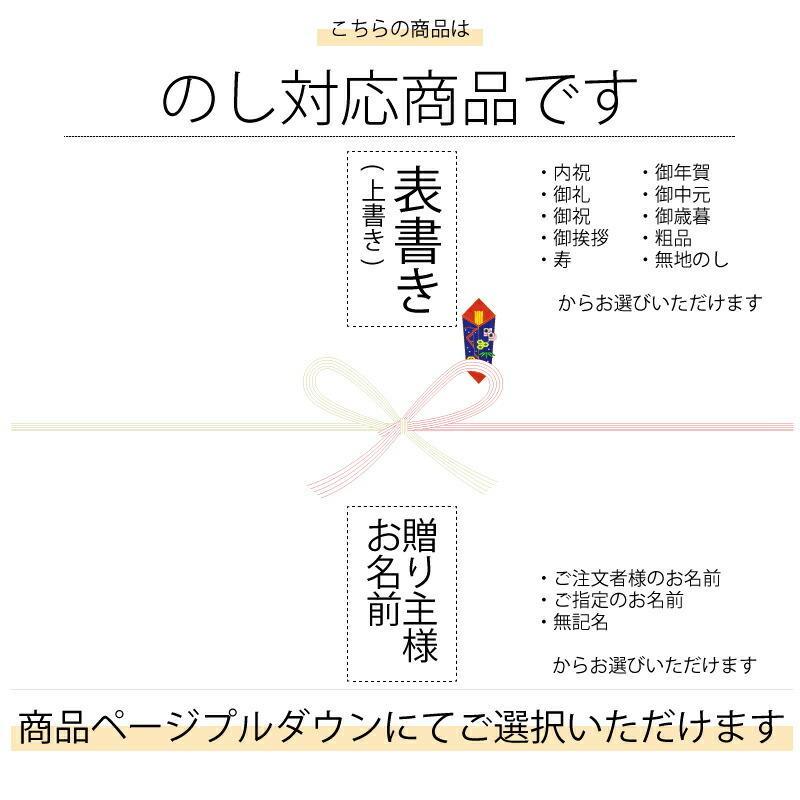 プラチナ プロシオン万年筆 ポーセリンホワイト [A5] ギフト お祝い 内祝 御礼 御返し|shop-magooch|04