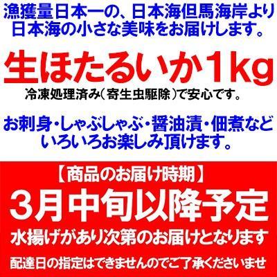 香住産 ほたるいか 生 1kg A級 送料無料 刺身 醤油漬 ホタルイカ 蛍烏賊 いか イカ 烏賊|shop-syukuin|12