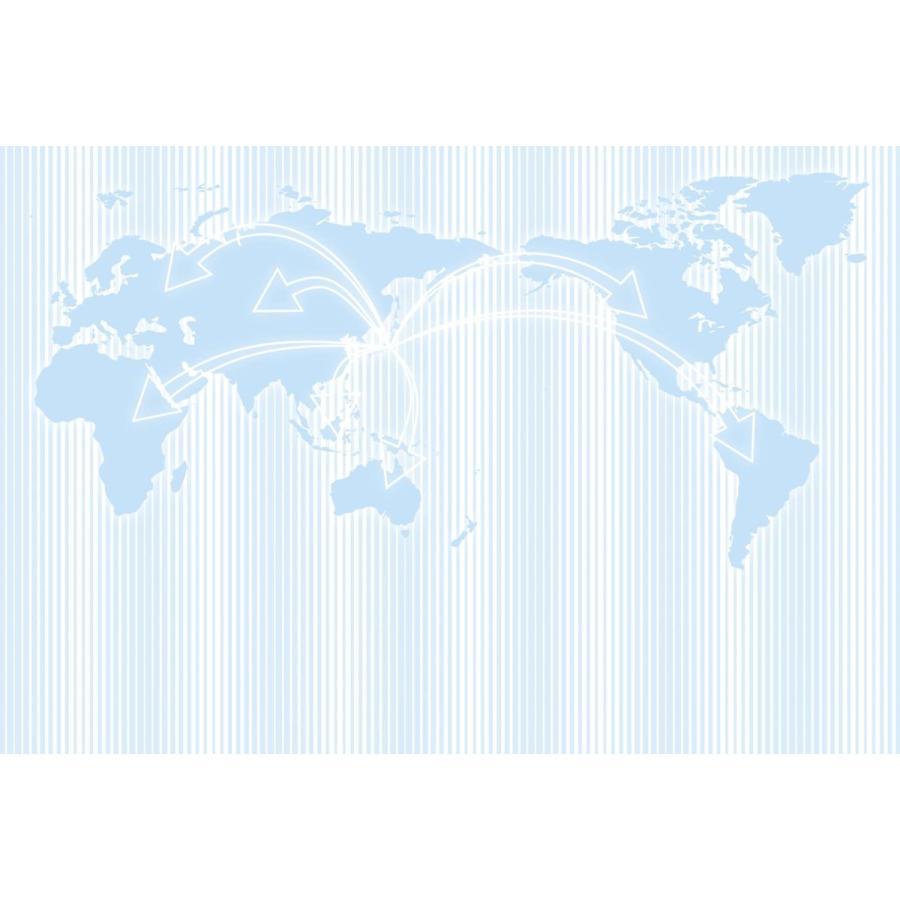 QC04 アマチュア無線用 既製品QSLカード  100枚入り|shop-yacnet|02