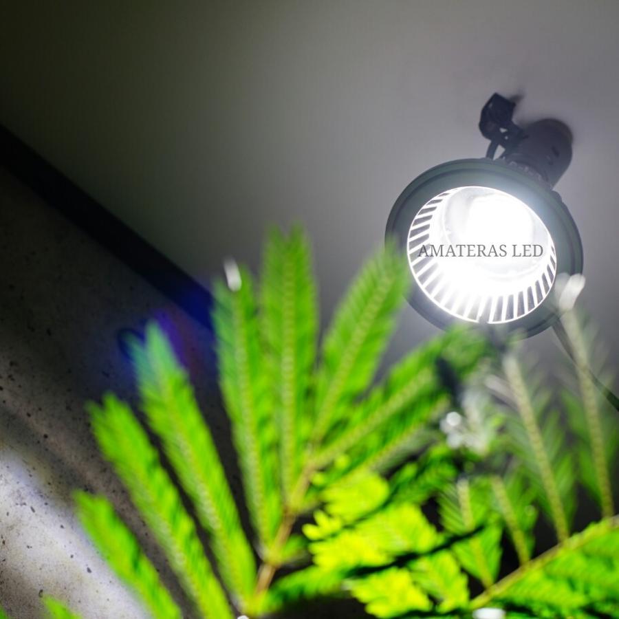 AMATERAS LED 20W 植物育成LED  太陽光LED アクアリウムLED テラリウム 室内太陽光LED ブラックボディ|shopbarrel|12