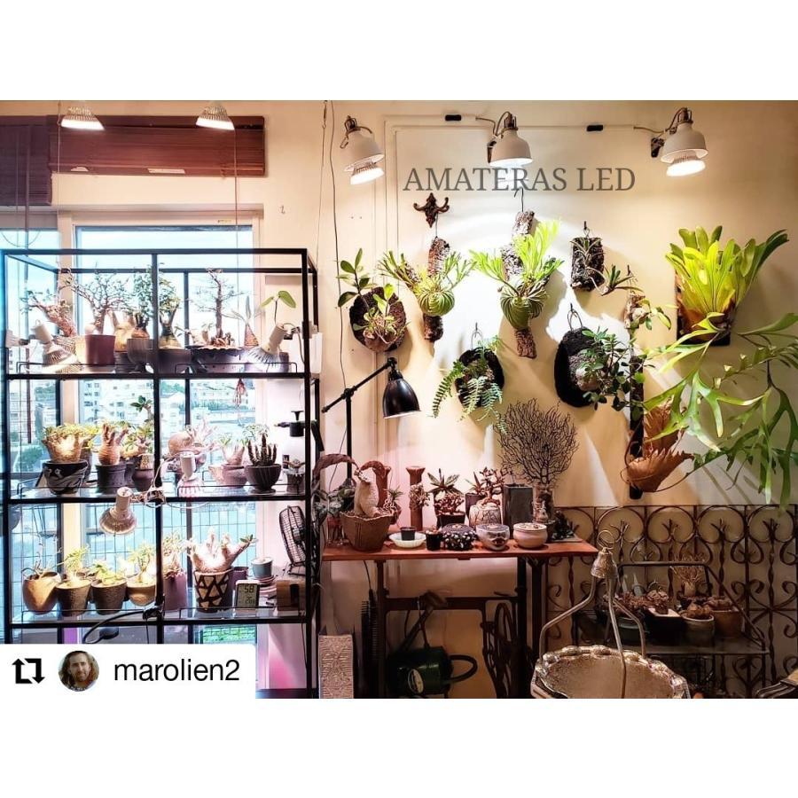 AMATERAS LED 20W 植物育成LED  太陽光LED アクアリウムLED テラリウム 室内太陽光LED ブラックボディ|shopbarrel|15