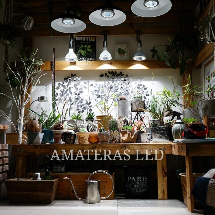 AMATERAS LED 20W 植物育成LED  太陽光LED アクアリウムLED テラリウム 室内太陽光LED ブラックボディ|shopbarrel|03