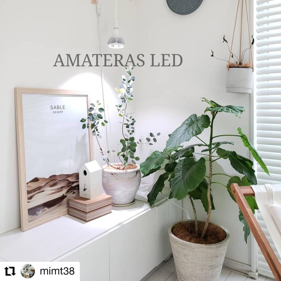 AMATERAS LED 20W 植物育成LED  太陽光LED アクアリウムLED テラリウム 室内太陽光LED ブラックボディ|shopbarrel|05