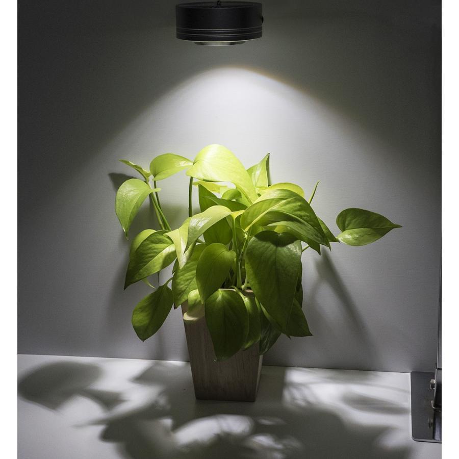 ボトルアクアリウム ボトルテラリウムLED 高演色 アクアリウム照明 テラリウム照明 ライト 植物育成LED 植物育成|shopbarrel|03
