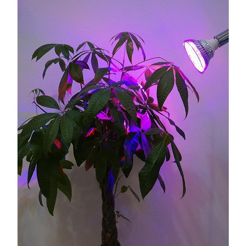 植物育成LED OPT-18W 紫色電球 口径E26(PlantLight18W)観葉植物 植物栽培ライト|shopbarrel|02