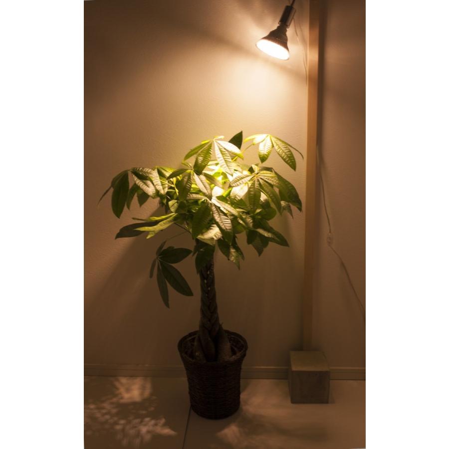 植物育成LED PlantLight18W 白色クリップタイプ(SUN-18W)+(プラントクリップA)観葉植物 植物栽培ライト|shopbarrel|05
