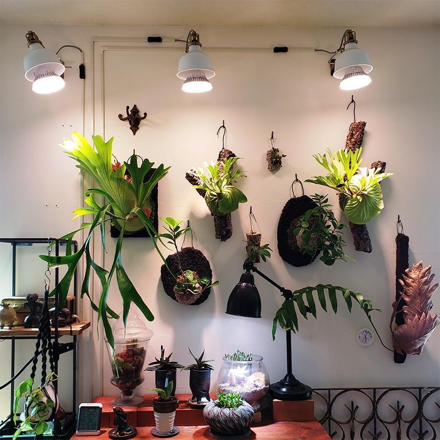植物育成LED PlantLight18W 白色クリップタイプ(SUN-18W)+(プラントクリップA)観葉植物 植物栽培ライト|shopbarrel|06
